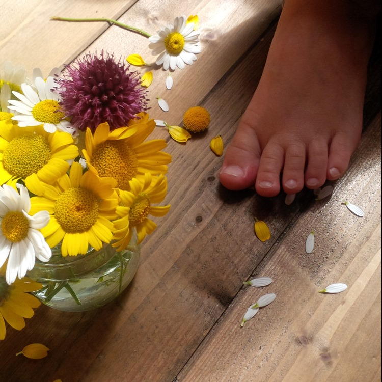 wild flowers and tiny toes