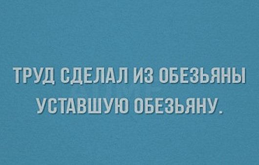 11449760-R3L8T8D-650-otk-07
