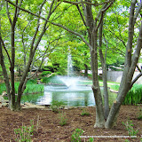 Waterscapes - 100_1069.JPG