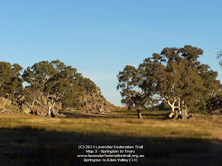 Springton to Eden Valley (14)
