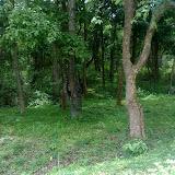 K.Gudi Wildlife Sanctuary