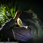 Victoria Azarenka - 2016 BNP Paribas Open -D3M_2913.jpg