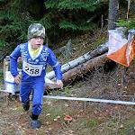 Oravatonni 2010, Nousiainen
