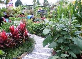 Datin Seri Jeanne Abdullah Semasa Festival Antarabangsa Landskap Dan Taman Malaysia Laman 2008 Selepas Edible Garden Di Perkenalkan Ramai Penduduk