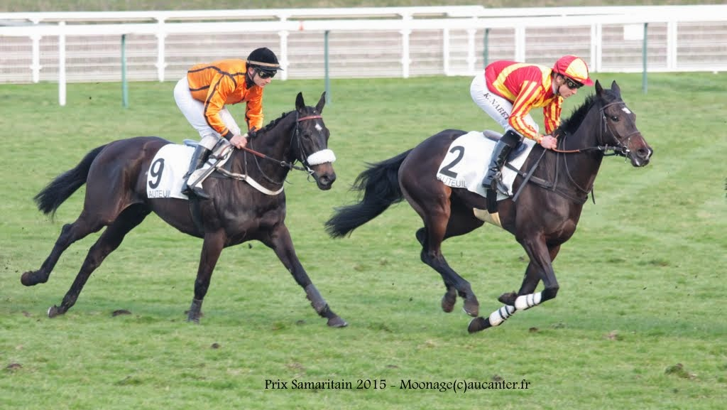 Photos Auteuil 14-03-2015 IMG_7375
