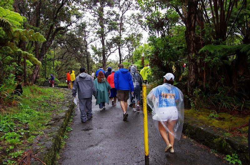 06-22-13 Hawaii Volcanoes National Park, Mauna Kea - IMGP8409.JPG