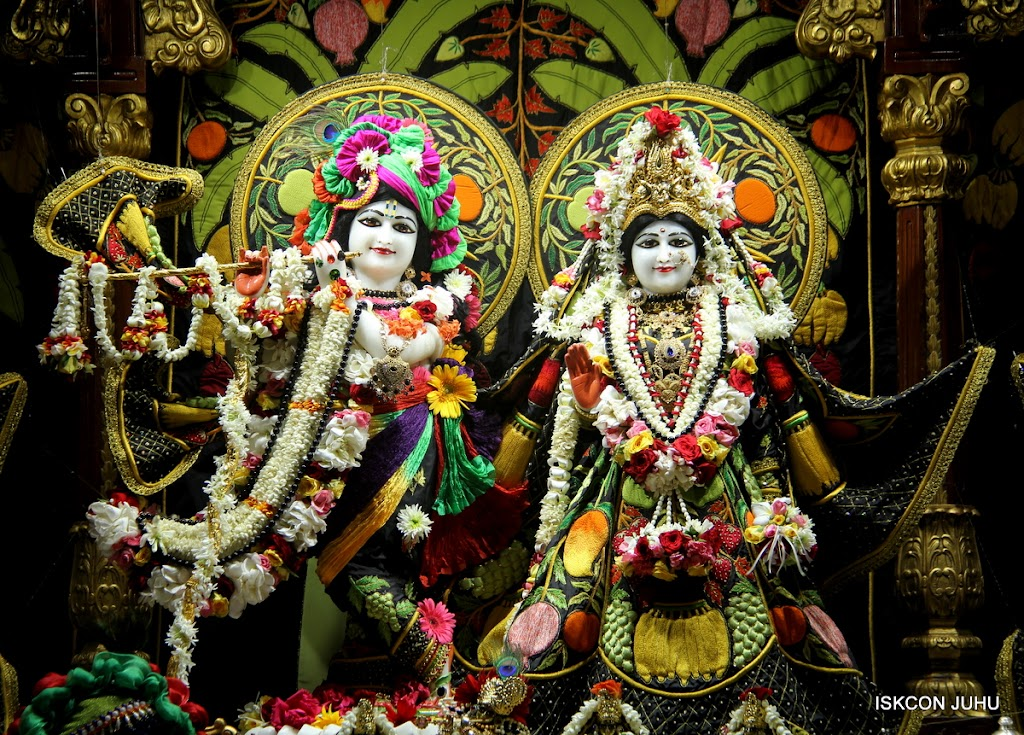 ISKCON Juhu Sringar Deity Darshan on 4th June 2016 (2)