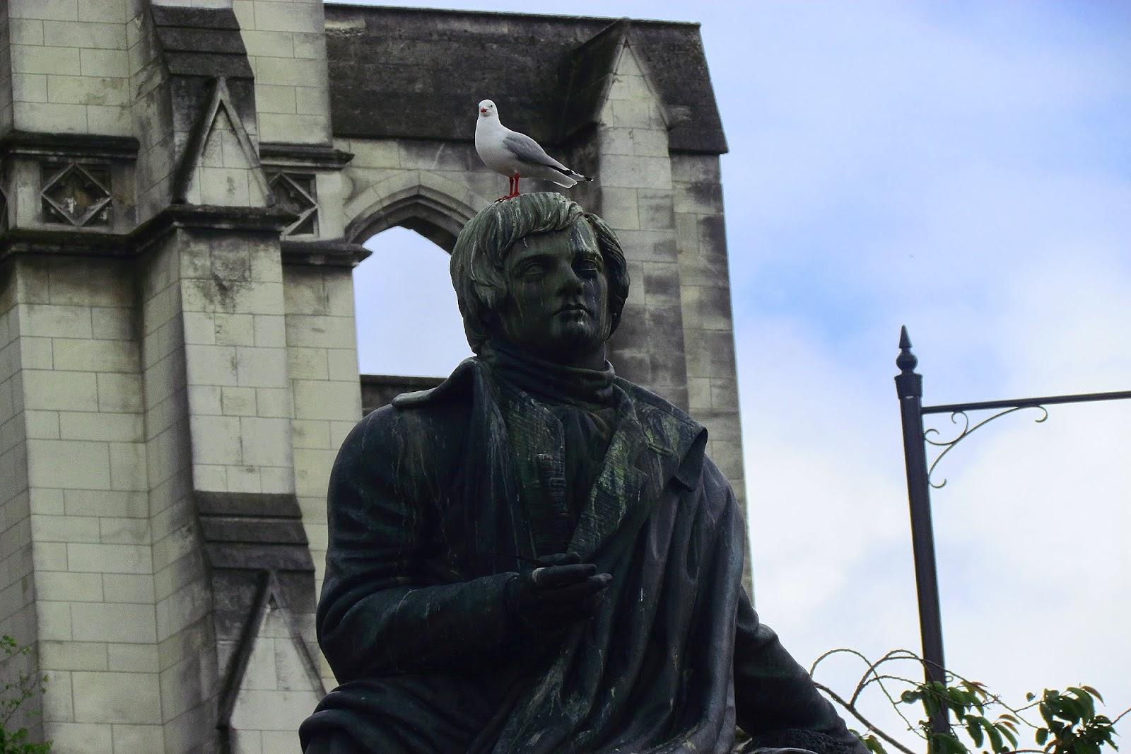 St Pauls Seagull.jpg