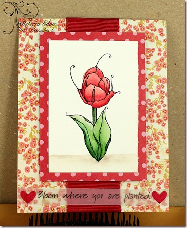 fl tulip red challenge wm