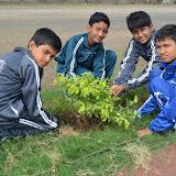 Gurukul Green Revolution (31).jpg
