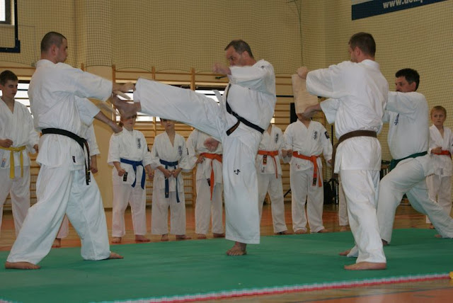 DO 2011 Pokaz karate - DSC00106_1.JPG