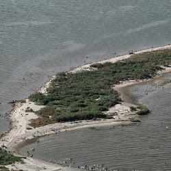 Cat Island Sept 27, 2013 109 (3)