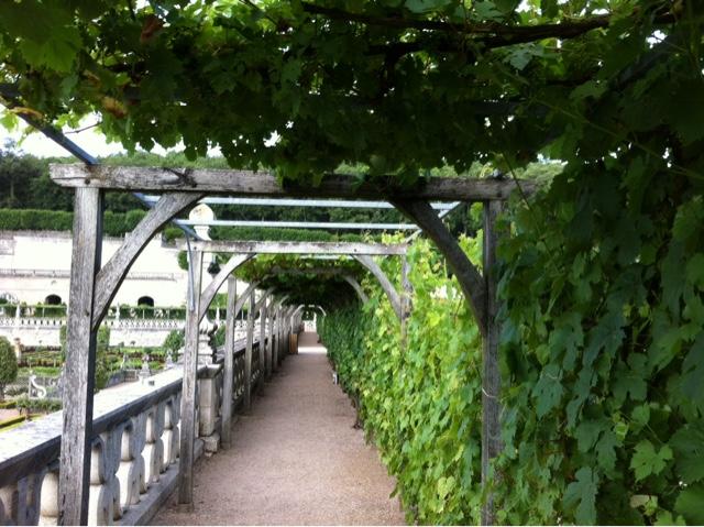Jardin villandry