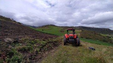 Tres hectáreas de frailejones y vegetación nativa fueron arrasadas en el páramo Almorzadero, en Santander