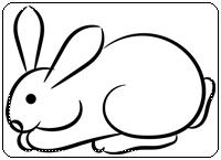คำศัพท์ภาษาอังกฤษกระต่าย