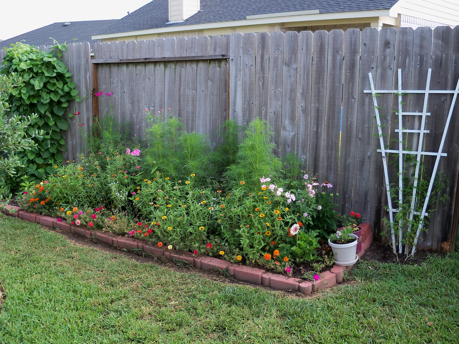 Gardening 2010, Part Two - 101_3246.JPG