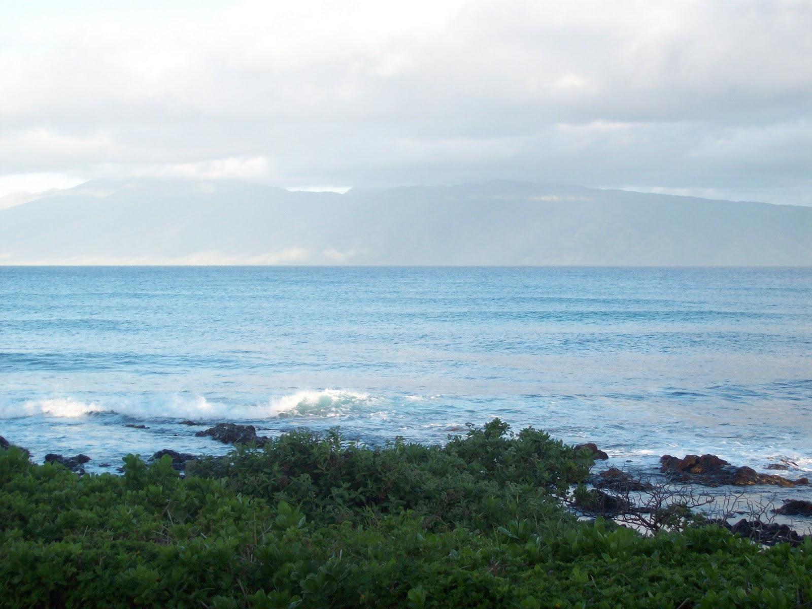 Hawaii Day 6 - 114_1682.JPG