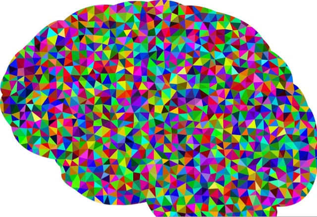 autism and puzzles of the mind