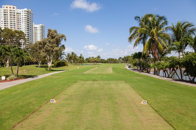 2015 Golf Tournament - 2015%2BLAAIA%2BConvention-1589.jpg