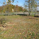 Hammo Planting - Shannon Schiesser - IMG_4971.JPG