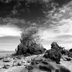 the Rocks by Ifan Deviandri - Landscapes Waterscapes