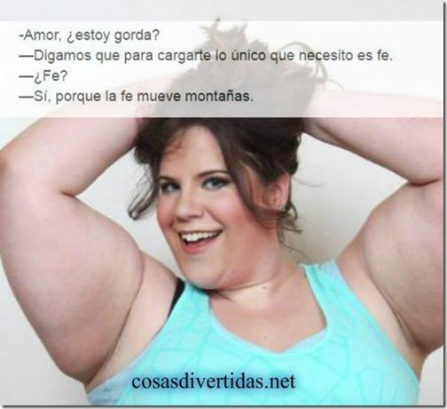 estoy gorda (7)