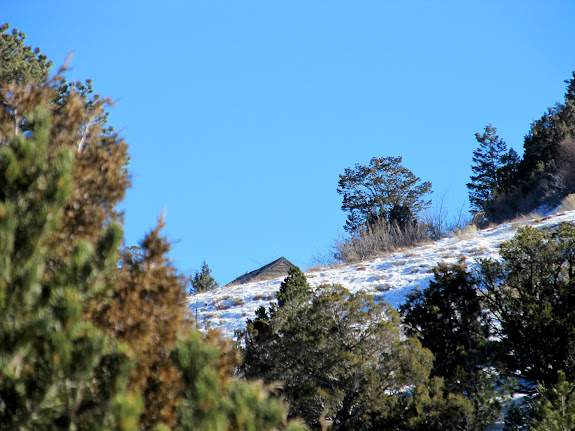 The tippy-top of an old cabin peeking out above the hillside