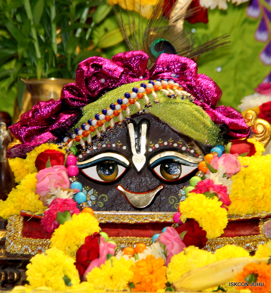 ISKCON Juhu Deity Darshan on 20th Oct 2016 (17)