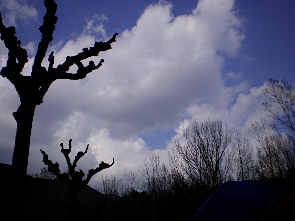 Campaments Amb Skues 2007 - ROSKU%2B086.jpg
