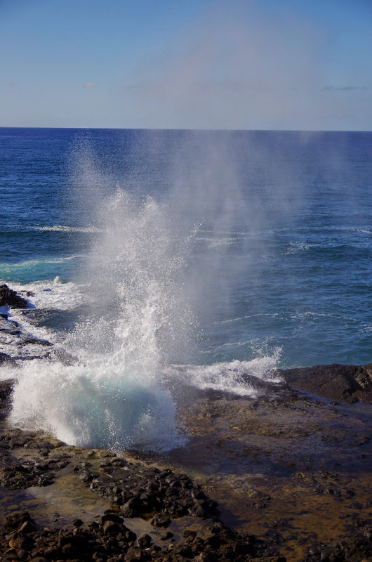 06-27-13 Spouting Horn & Kauai South Shore - IMGP9747.JPG