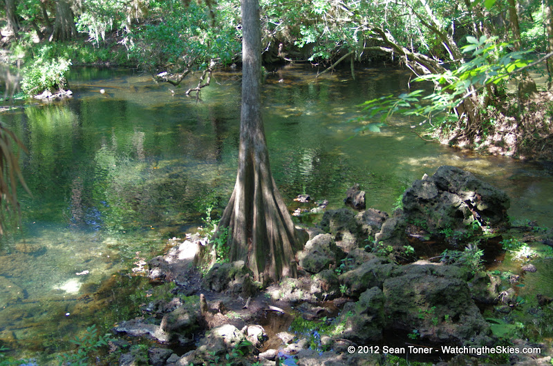 04-04-12 Hillsborough River State Park - IMGP9695.JPG