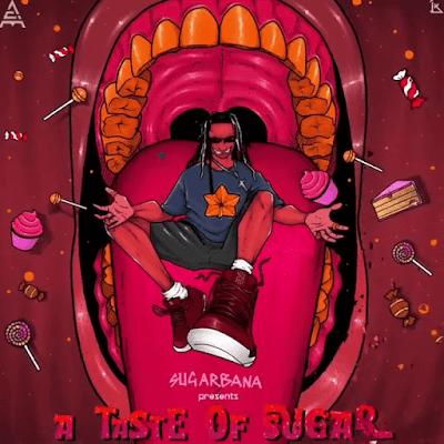 Sugarbana ft. Teni – Sweetest Taboo