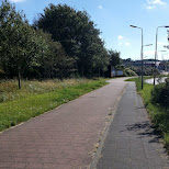 bicycle road towards the beach in Velsen, Noord Holland, Netherlands