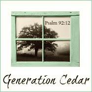 Generation Cedar