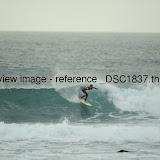 _DSC1837.thumb.jpg