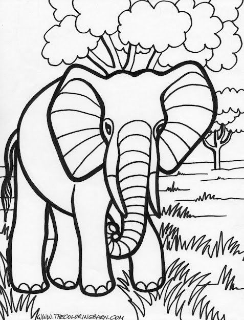 Elephant Coloring Pages Coloring For Kids Coloring For