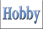 Hobby Bölümü