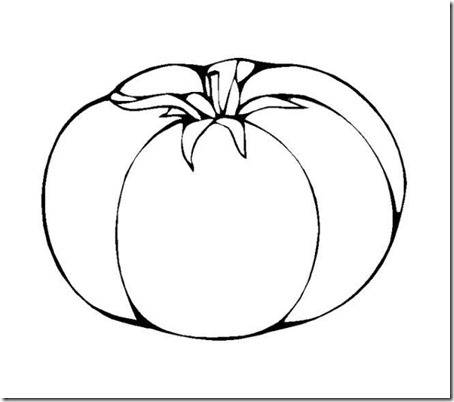 tomate  (6)