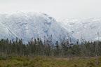 AU PAYS DES CARIBOUS Le Parc National du Gros Morne, à Terre Neuve