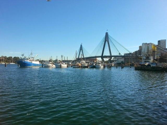 The Anzac Bridge from the Fish Markets