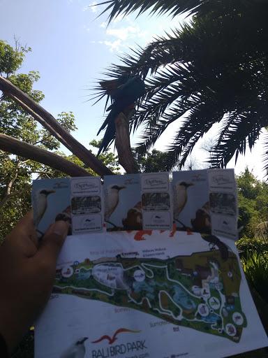 tiket Bali bird Park
