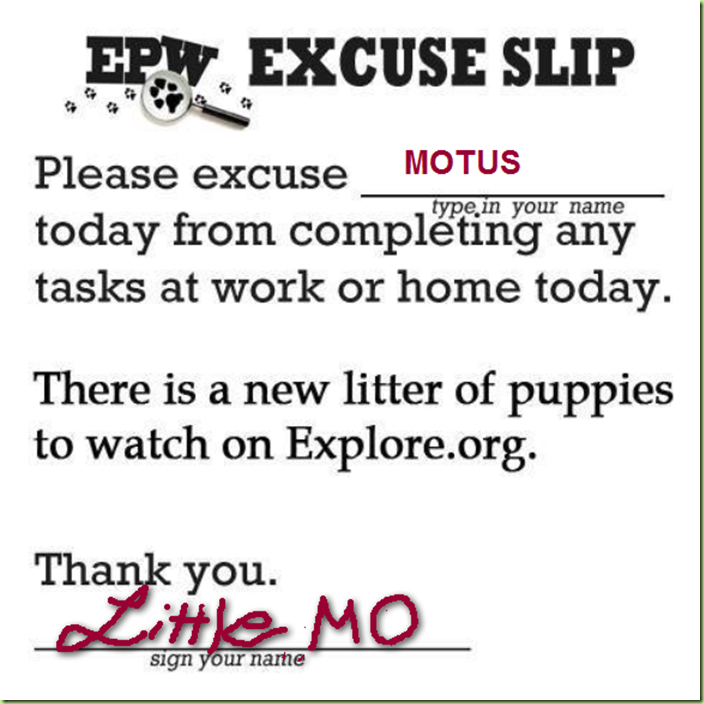 EXCUSE SLIP FROM unl