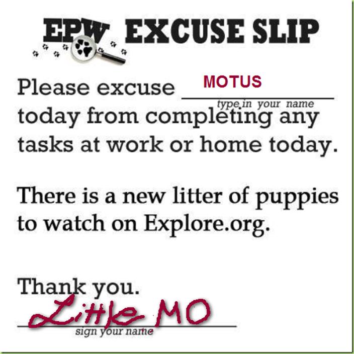 EXCUSE SLIP FROM unl