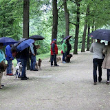14. Juni 2016: On Tour in der Eremitage - Eremitage%2B%252813%2529.jpg