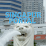 Singapur-Portal's profile photo