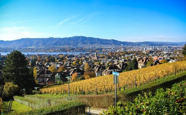 Tages- oder Wochenendausflug nach Birrfeld (nähe Zürich)
