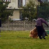 Obrona sportowa Abi - obrona (14).jpg