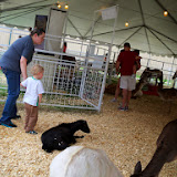 Fort Bend County Fair 2014 - 116_4266.JPG
