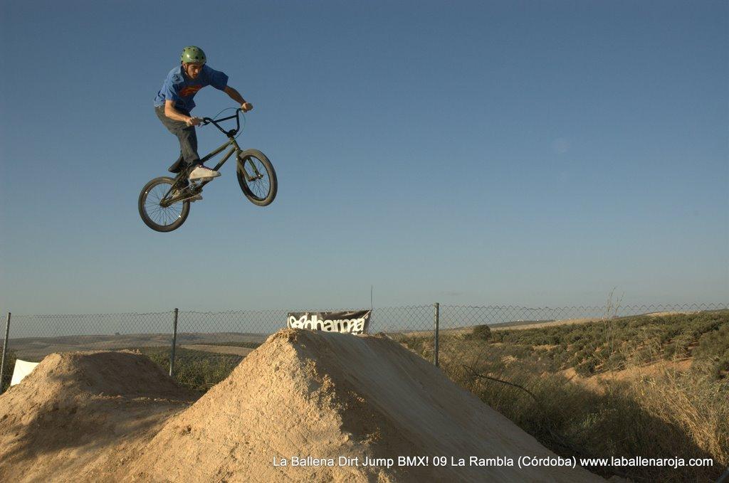Ballena Dirt Jump BMX 2009 - BMX_09_0112.jpg