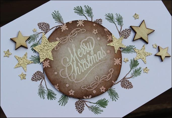Christmas Card Stampin Up Wonderland Zweig Weihnachten Karten Gold Glitter Sterne Holz Embellishments 01